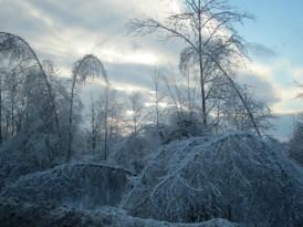 ice storm Quebec 2013