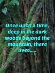 Once upon a time, deep in the dark woods beyond the mountain, there lived...