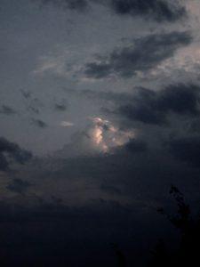 sparse moonlight
