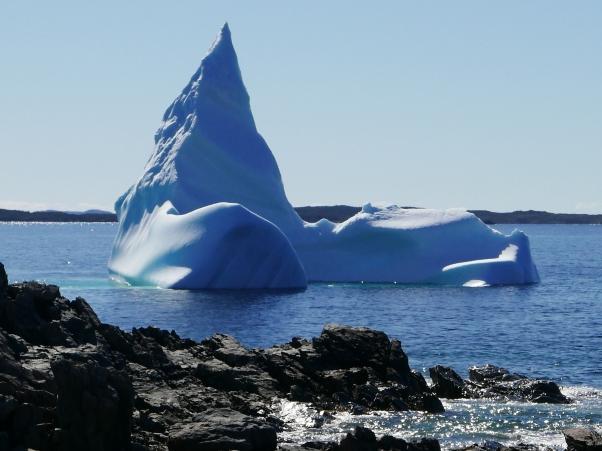 Iceberg off Fogo Island 2018